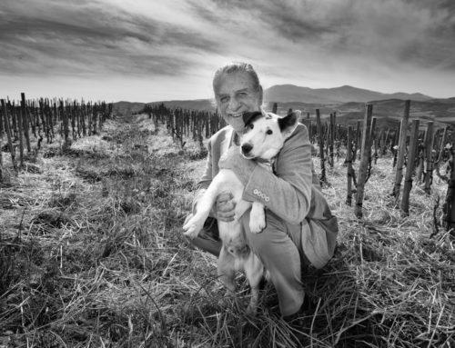 """20 MARZO 2019  """"Podere Le Ripi"""" – Toscana – CENA DEGUSTAZIONE"""